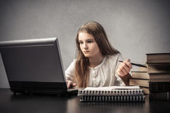 Concentrated girl studying Stock Photos
