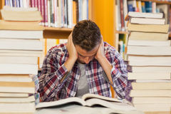 Concentrated handsome student studying between piles of books Stock Photo