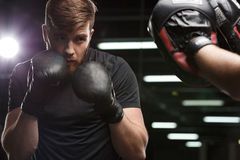 Concentrated handsome young strong sports man boxer. Image of concentrated handsome young strong sports man boxer make exercises in gym with trainer and looking stock photos