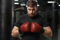 Concentrated handsome young strong sports man boxer. Image of concentrated handsome young strong sports man boxer posing in gym and looking at camera stock photo