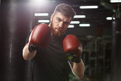 Concentrated handsome young strong sports man boxer. Image of concentrated handsome young strong sports man boxer posing in gym and looking at camera royalty free stock image