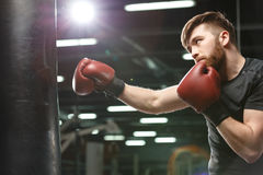 Concentrated handsome young strong sports man boxer. Photo of concentrated handsome young strong sports man boxer make exercises in gym and looking aside royalty free stock image