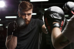 Concentrated handsome young strong sports man boxer. Photo of concentrated handsome young strong sports man boxer make exercises in gym with trainer and looking stock photography