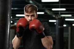 Concentrated handsome young strong sports man boxer. Photo of concentrated handsome young strong sports man boxer posing in gym and looking aside stock photography