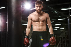 Concentrated handsome young strong sports man boxer. Photo of concentrated handsome young strong sports man boxer posing in gym and looking at camera stock photos