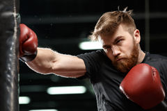 Concentrated handsome young strong sports man boxer. Picture of concentrated handsome young strong sports man boxer make exercises in gym and looking aside royalty free stock photography