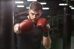 Concentrated handsome young strong sports man boxer. Picture of handsome young strong sports man boxer posing in gym and looking at camera royalty free stock images