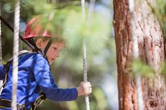 Kid in adventure park. Concentrated little boy climbing in treetop adventure park, healthy active lifestyle concept Royalty Free Stock Photos