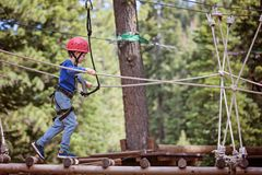 Kid in adventure park. Concentrated little boy climbing in treetop adventure park, healthy active lifestyle concept Royalty Free Stock Photo
