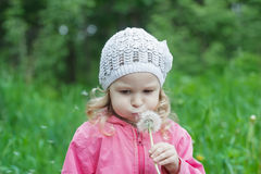 Concentrated little girl blowing on white dandelion seeds pod Royalty Free Stock Photos