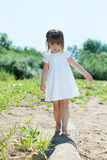 Concentrated little girl walks on log in park Stock Image