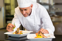 Concentrated male chef garnishing food in kitchen. Closeup of a concentrated male chef garnishing food in the kitchen royalty free stock photography