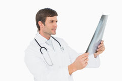 Concentrated male doctor looking at xray picture of lungs Stock Image