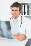 Concentrated male doctor looking at xray picture of spine Royalty Free Stock Images