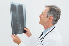 Concentrated male doctor looking at xray Royalty Free Stock Photo