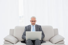 Concentrated mature businessman using laptop at home Royalty Free Stock Image
