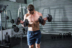 Concentrated muscular man lifting dumbbells Royalty Free Stock Images