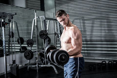 Concentrated muscular man lifting dumbbells Stock Images