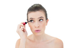 Concentrated natural brown haired model applying mascara Royalty Free Stock Photography