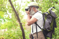 Concentrated old male tourist photographing forest. Side view of calm bearded mature man taking photo of woodland scene during his trip. He is holding camera Stock Photo