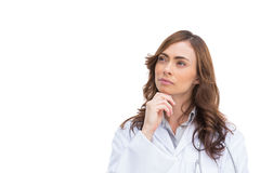 Concentrated pretty doctor posing Royalty Free Stock Photo