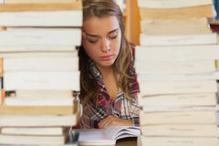 Concentrated pretty student studying between piles of books Stock Photo