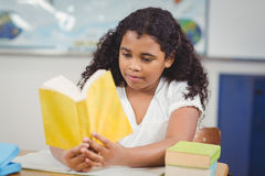 Concentrated pupil reading book in a classroom Royalty Free Stock Photo