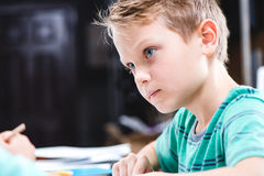 Concentrated schoolchild studying royalty free stock photography