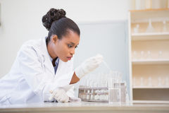 Concentrated scientist analyzing test tube Stock Photos