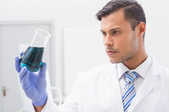 Concentrated scientist looking at beaker Royalty Free Stock Images