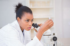 Concentrated scientist looking test tube Royalty Free Stock Photos