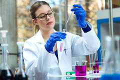 Concentrated scientist making experiment in laboratory. Portrait of concentrated scientist making experiment in laboratory royalty free stock images