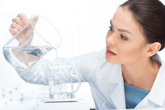Concentrated scientist pouring chemical liquid into laboratory glassware. Side view of concentrated scientist pouring chemical liquid into laboratory glassware Royalty Free Stock Photo