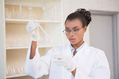 Concentrated scientist working attentively with pipette Stock Photo