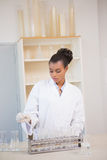Concentrated scientist working attentively with pipette Royalty Free Stock Images