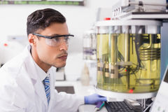Concentrated scientist working Royalty Free Stock Image
