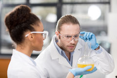 Concentrated scientists analyzing test tube in laboratory Royalty Free Stock Photo
