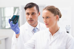 Concentrated scientists holding beaker with fluid Stock Photo