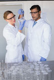 Concentrated scientists looking at beaker Royalty Free Stock Images