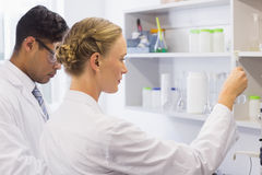 Concentrated scientists looking at beaker Royalty Free Stock Image