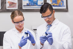Concentrated scientists looking at medication Royalty Free Stock Photography