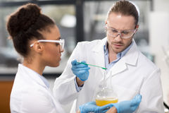 Concentrated scientists making experiment in laboratory. Side view of concentrated scientists making experiment in laboratory stock photography