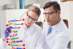 Concentrated scientists working together with dna helix Royalty Free Stock Images