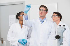 Concentrated scientists working together Stock Photos