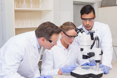 Concentrated scientists working together with microscope Stock Photography