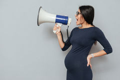 Concentrated screaming pregnant business lady holding loudspeaker. Image of concentrated screaming pregnant business lady standing over grey background. Looking stock image