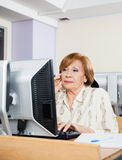 Concentrated Senior Student Using Computer In Classroom. Concentrated senior female student using computer at desk in classroom Royalty Free Stock Photo