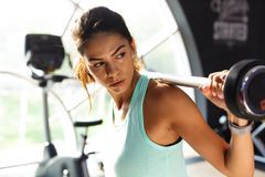 Concentrated sports woman doing exercise with barbell and looking away royalty free stock image