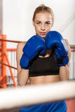Concentrated sportswoman waiting for a fight Stock Photo
