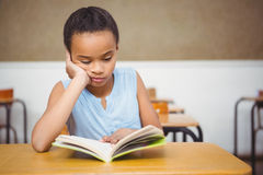 Concentrated student reading a book. At the elementary school Royalty Free Stock Image